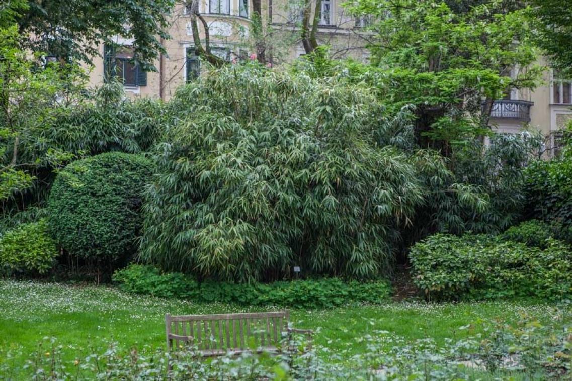 Tradition kunst und garten bild 1 - Bambus gartenhaus ...